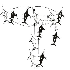 Swordfish Tango Steps